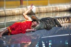 De gevaarlijke krokodil toont royalty-vrije stock foto's