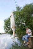 De gevangen vissen royalty-vrije stock foto's
