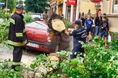 De gevolgen van de orkaan in Uzhgorod Stock Afbeelding
