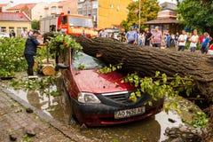 De gevolgen van de orkaan in Uzhgorod Royalty-vrije Stock Fotografie
