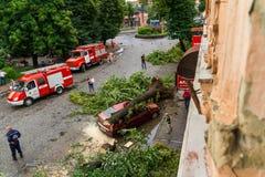 De gevolgen van de orkaan in Uzhgorod Stock Fotografie