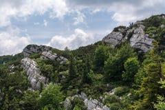 De gevouwen vormingen van de lagenrots in Risnjak, Kroatisch nationaal park Stock Fotografie