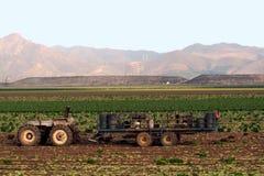 De gewassen van de tractor en van het gebied Royalty-vrije Stock Afbeeldingen
