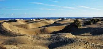 De geweven achtergrond van het zand Natuurlijk Licht Stock Afbeeldingen