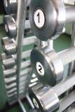 De gewichten van de domoor in gymnastiek Stock Afbeelding