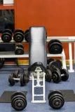 de gewichten van de geschiktheidsgymnastiek Stock Fotografie