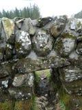 De gezichten van de steen Stock Foto