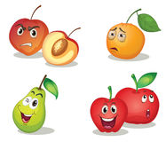 De gezichten van het fruit Stock Afbeeldingen