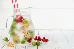 De gezonde detoxbes goot op smaak gebracht water De zomer die eigengemaakte drank met kruisbessen en wit en rode aalbes op wit ve Royalty-vrije Stock Afbeeldingen