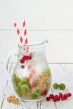 De gezonde detoxbes goot op smaak gebracht water De zomer die eigengemaakte drank met kruisbessen en wit en rode aalbes op wit ve Stock Foto