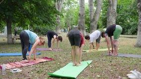 De gezonde levensstijl, mensen die yoga, geschiktheidsopwarming binnen in openlucht, wijfje en kerels op kleurrijke mat uitvoeren stock footage