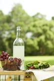 De gezonde Picknick van het Pitabroodje bij het Park Stock Foto