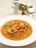 De gezonde soep van de Kool Stock Fotografie