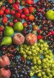 De gezonde verscheidenheid van het de zomerfruit Zwarte en groene druiven, aardbeien, fig., zoete kersen, perziken Royalty-vrije Stock Foto's