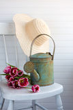 De gieter van de tuin Royalty-vrije Stock Afbeelding