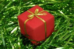 De Gift van Chrstmas stock foto's