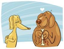 De gift van de het paarvalentijnskaart van honden Stock Afbeelding