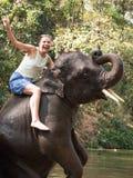 De gillende vrouw zit het berijden op jonge olifant die op zijn achterste benen was toegenomen en zijn boomstam verpakt Royalty-vrije Stock Foto's
