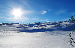 De glanzende koude winter Stock Afbeeldingen
