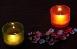De glaskandelaars, namen toe en namen bloemblaadjes toe Royalty-vrije Stock Afbeelding