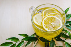 De glaskop van gemberthee met citroen diende om ruscusbloemen van kader groene bladeren op een lichte houten rustieke muur Stock Foto
