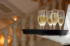 De glazen van de kelner en van de wijnstok Royalty-vrije Stock Foto