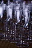 De Glazen van de wijn   Royalty-vrije Stock Foto's