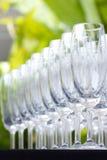 De glazen van de wijn in tuin Stock Foto's