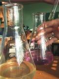 De glazen van het laboratorium Stock Fotografie