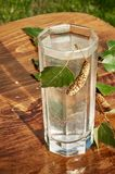 De glazen van van de het sapdrank van het berksap de berktakken op houten lijst gezonde vitamine als achtergrond springen nuttige Royalty-vrije Stock Foto's