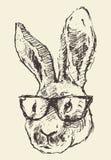 De glazenhand getrokken schets van konijn hoofdhipster Stock Afbeelding