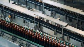 De glazige die flessen met bier worden gevuld bewegen zich langs de fabrieksvervoerder stock videobeelden