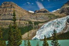 De gletsjer die van Berg in Berg Lake, Brits Colombia, Canada vallen Stock Foto's