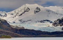 De Gletsjer en de Torens van Mendenhall Stock Fotografie