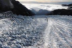 De Gletsjer Nieuw Zeeland van de vos stock fotografie