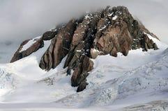 De Gletsjer Nieuw Zeeland van de vos Stock Foto