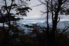 De gletsjer Perito Moreno Stock Afbeeldingen