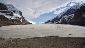 De Gletsjer van Athabasca Stock Afbeeldingen