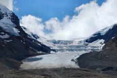 De Gletsjer van Athabasca, het Nationale Park van de Jaspis Stock Afbeelding