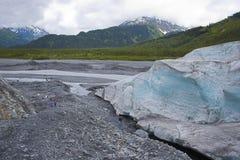 De Gletsjer van de Fjord van Kenai stock foto's