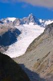 De Gletsjer van de vos Stock Foto's