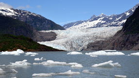 De Gletsjer van Mendenhall Stock Fotografie