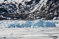 De Gletsjer van Portage Stock Afbeeldingen