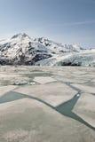 De Gletsjer van Portage Stock Afbeelding