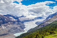 De Gletsjer van Saskatchewan in Parker Ridge in Jasper National Park stock foto