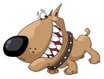 De glimlach van de hond Stock Foto