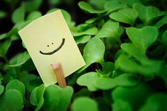 De glimlach van het pictogram Stock Foto