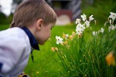 De glimlachende jongen ruikt bloemen Stock Foto's