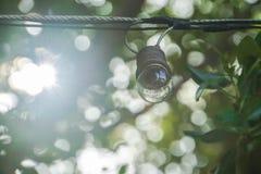De gloeilamp hangt in huistuin met helder zonlicht bokeh en gloed royalty-vrije stock foto's