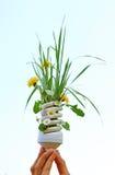 De gloeilamp van Eco met Bloemen Royalty-vrije Stock Afbeelding